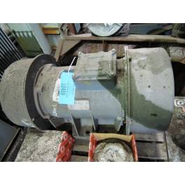 SPARE MOTOR FOR GUDGEON LUMP CRUSHER (XF3254)